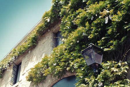 paysagiste: Mur vert sur l'extérieur du bâtiment et la lampe millésime Banque d'images