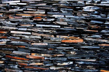 dark woods: Dark Woods Wall Texture