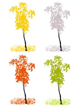 Vector Four Seasons Illustration Vector