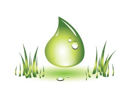 oil drops: Eco green drop