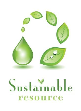 sustentabilidad: Hojas y gota verde