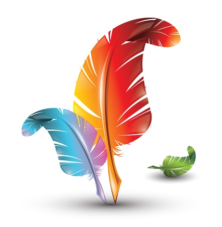Colourful artistic feathers Vector