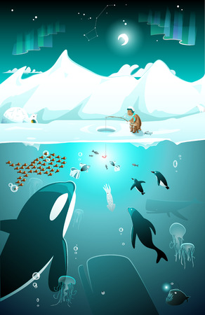 Underwater arctic marine life Illustration