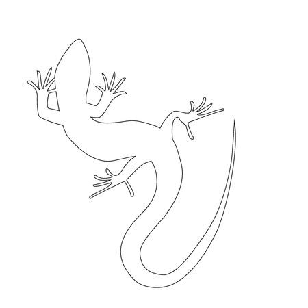 Beautiful  monochrome lizard, lizard silhouette. outline picture salamander. Vector illustration Illustration