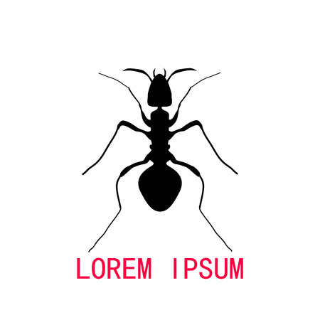 hormiga caricatura: Negro silueta de la hormiga, dise�o del logotipo. ilustraci�n vectorial