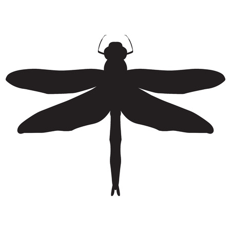 dragonfly: Dragonfly Silhouette. design dragonfly. Insect with wings. drawn dragongly. Dragonfly isolated on white background. Vector illustration Illustration