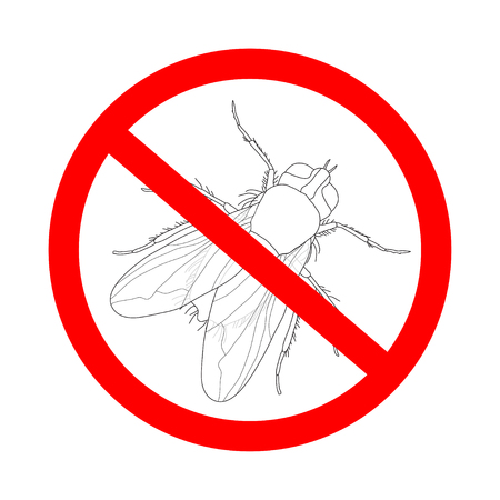musca domestica: prohibition sign  fly. Musca domestica..  Insect. a realistic fly. fly silhouette. fly isolated  on white background.  fly Design for coloring book.  hand-drawn fly. Vector illustration