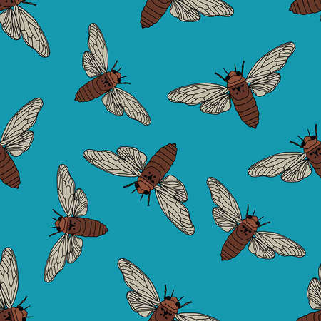 Seamless pattern with cicada . Cicadidae. Chremistica umbrosa.     hand-drawn cicada . Vector illustration