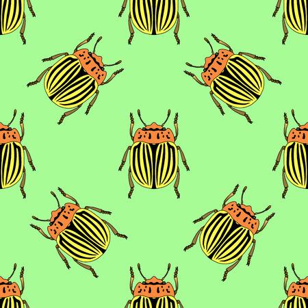 colorado: Seamless pattern with colorado potato beetle. Leptinotarsa decemlineata.   colorado beetle.  hand-drawn colorado beetle. Vector illustration Illustration