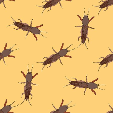 creeps: Seamless pattern with European mole cricket.  Gryllotalpidae.  hand-drawn  mole cricket . Vector illustration Illustration