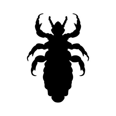 cabeza: Silueta de la cabeza piojo humano. Pediculus humanus capitis. piojo silueta aislados sobre fondo blanco. piojo. Ilustración vectorial