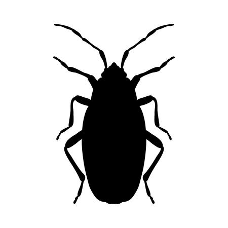 firebug: silhouette Pyrrhocoris apterus. beetle silhouette. Bug-soldier silhouette. Firebug silhouette.  Firebug  silhouette isolated on white background.  hand-drawn beetle silhouette. Vector illustration