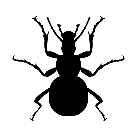 geotrupidae: Insect silhouette. Sticker ground beetle bug. Carabidae coleoptera. Illustration
