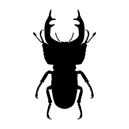 Insect silhouette. stag-beetle. Lucanus cervus. Sketch of stag-beetle. stag-beetle isolated on white background. hand-drawn stag-beetle. Иллюстрация