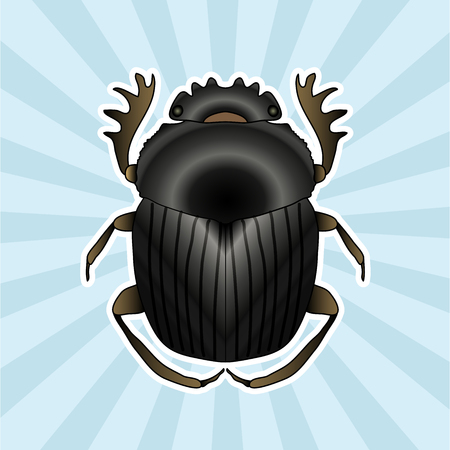 Insect anatomy. Sticker Geotrupidae dor-beetle . Sketch of dor-beetle. dor-beetle. dor-beetle scarab hand-drawn scarab, dor-beetle.