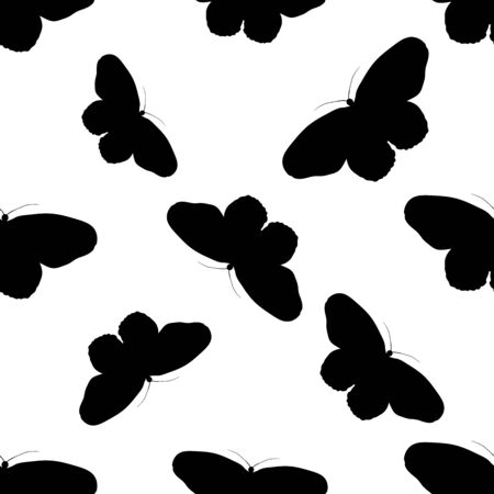 brown rice: Seamless pattern with butterfly Idea Leuconoe. Paper Kite .    hand-drawn paperkite butterfly . Vector illustration