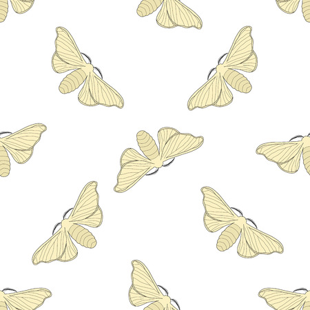 entomology: Seamless pattern with butterfly Bombyx mori.    hand-drawn butterfly Bombyx mori . Vector illustration