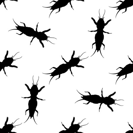 Seamless pattern with European mole cricket.  Gryllotalpidae.  hand-drawn  mole cricket . Vector illustration Иллюстрация