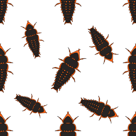 Seamless pattern with Trilobite beetle Duliticola Platerodrilus. hand-drawn Trilobite beetle. . Vector illustration Illustration