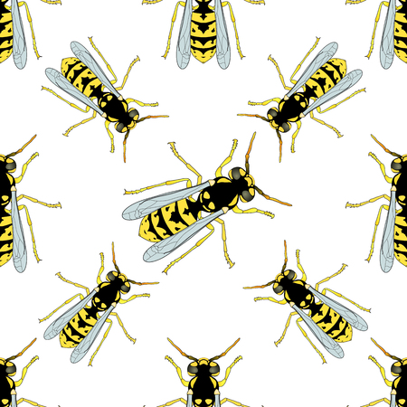 Seamless pattern with Wasp . hand-drawn Wasp . Vector illustration Фото со стока - 55946976