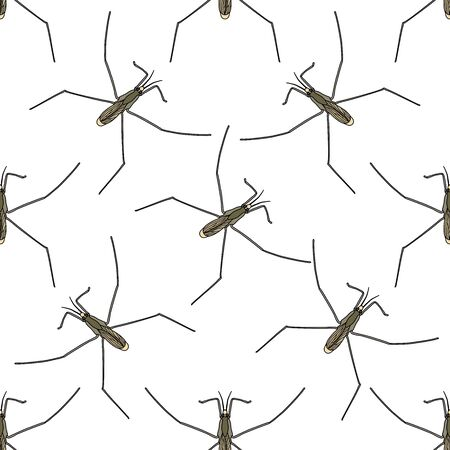 Seamless pattern with Common water strider. Gerridae. GERRIS LACUSTRIS. hand-drawn water strider . Vector illustration Фото со стока - 55946979