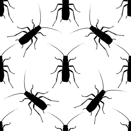 cockroach: Seamless pattern with cockroach. blattella germanica   hand-drawn cockroach. Vector illustration