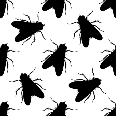 Seamless pattern with fly. Musca domestica . hand-drawn . fly. Vector illustration Иллюстрация