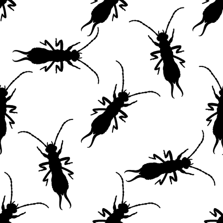 Seamless pattern with  Earwig .Forficula auricularia. hand-drawn Earwig . Vector illustration