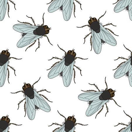 Jednolite wzór z muchą. Musca domestica. rysowane ręcznie. latać. ilustracji wektorowych