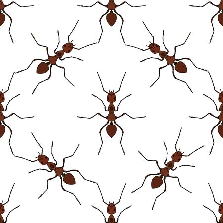 creeps: Seamless pattern with ant .Formica exsecta.   ant. illustration