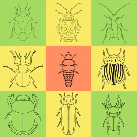 insect icons set. dor-beetle and firefly, firebug and ant, fly and cockroach, colorado beetle and mosquito, stink bug and trilobite. vector illustration Иллюстрация