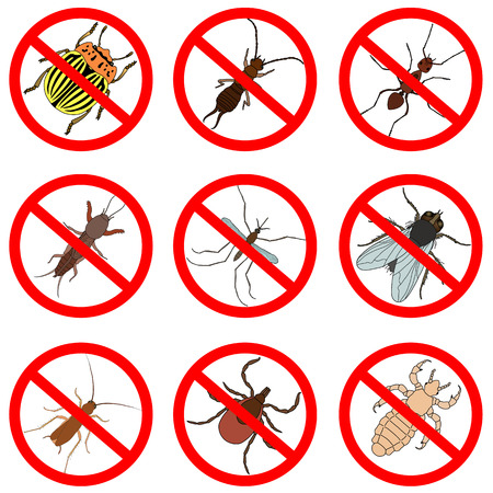Pest and insect control, icons set. Tick and cricket, bug and ant, fly and cockroach, colorado beetle and mosquito, vector illustration Ilustração