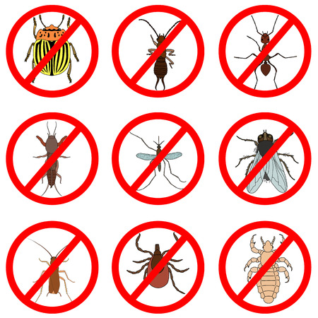 Pest and insect control, icons set. Tick and cricket, bug and ant, fly and cockroach, colorado beetle and mosquito, illustration