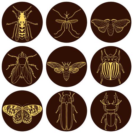 昆虫アイコンを設定します。蝉やクワガタ、ホタルとハチ、フライと paperkite 蝶、コロラド州カブトムシと蚊、ベクトル図  イラスト・ベクター素材