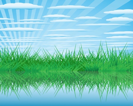 Summer landscape with a thick green grass and clouds Stock Vector - 13389296