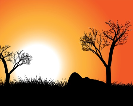 African evening landscape against the backdrop of the setting sun Stock Vector - 13807107