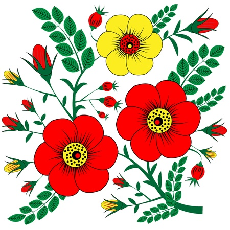 rose hips: Flowers and rose hips as a design element on a white background