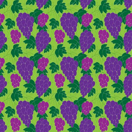 Seamless grape pattern on a green background for your design Vector