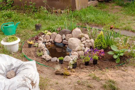 Rock garden with decorative trees and flowers