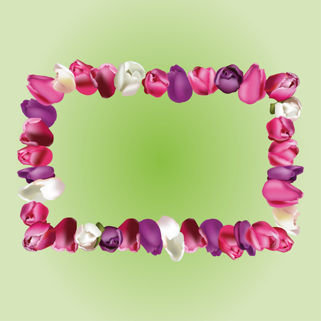 vegetal: Frame of tulips with place for your text or photo on a citron background.