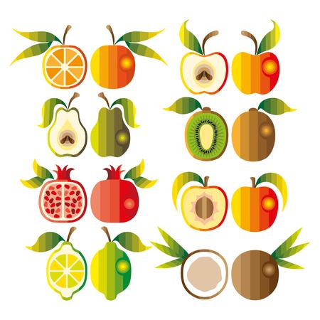 Ensemble coloré de fruits exotiques tropicales. Vecteur