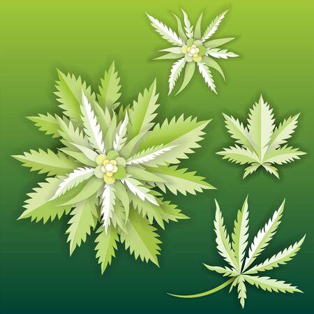 set of Marijuana or cannabis vector leaf