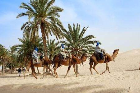 desierto del sahara: Caravana tur�stica en el desierto del Sahara. T�nez Foto de archivo