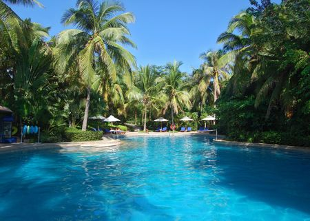 swimming pool in china hotel with palm trees. china, Hainan, Dadunhai