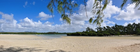 Beautiful tropical scenery, beach  mauritius island  photo