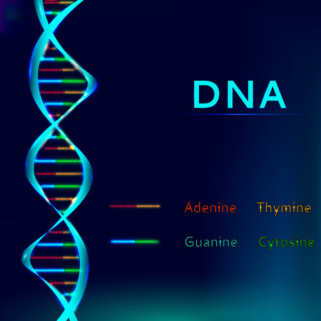 Glowing DNA structure sequence vector illustration.