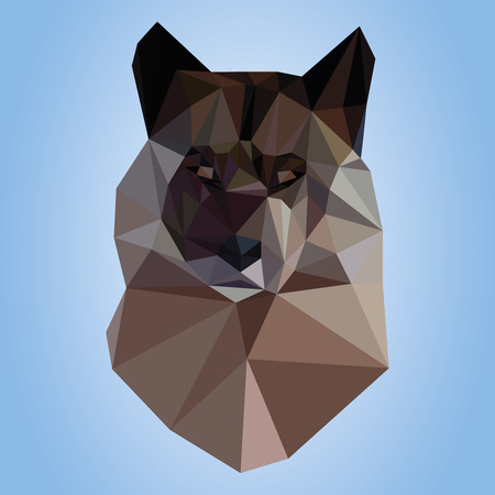 duality: Polygonal wolf on blue background