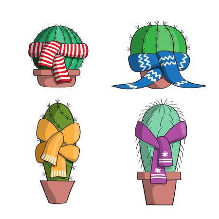 scarves: Cacti in pots. On cacti tied colorful scarves.