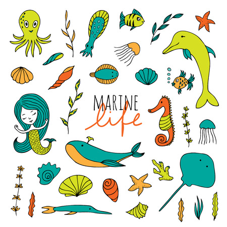 Vector set of marine life. Fish, mermaid, sea animals hand drawn in Doodle style.