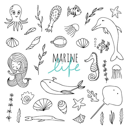 life style: Vector set of marine life. Fish, mermaid, sea animals hand drawn in Doodle style. Black-and-white image.